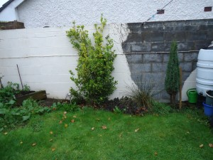 Dwarf wall before